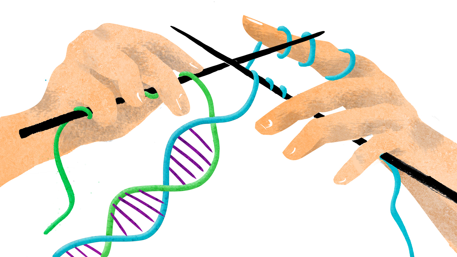The Human Race with three strands of DNA?