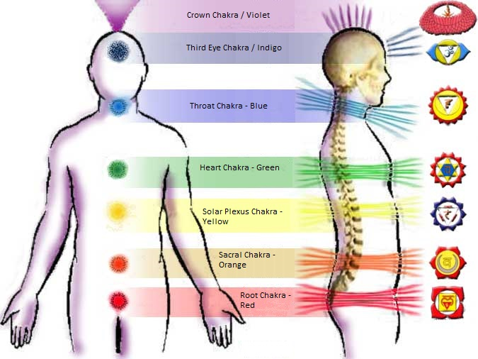 The Chakras & Their Functions