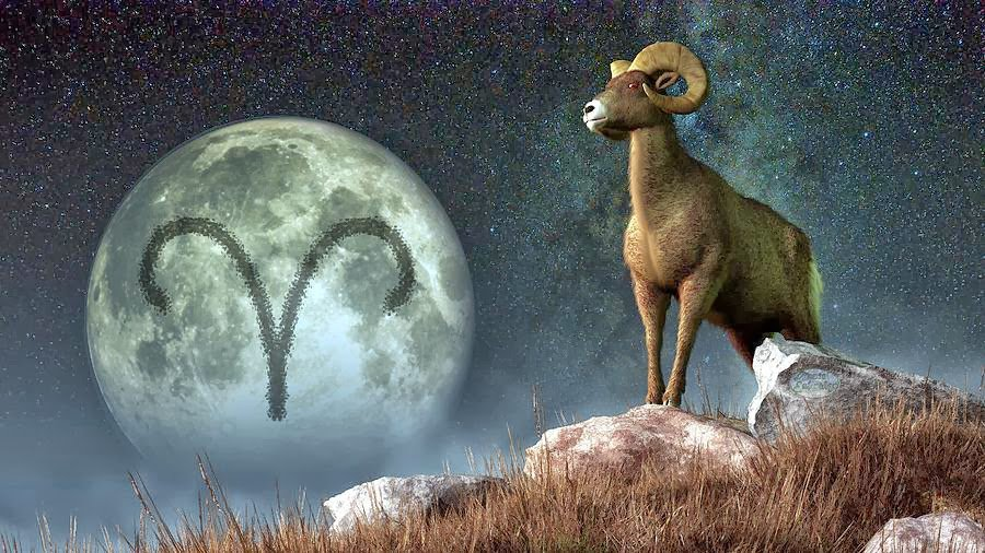 What is the Meaning of the Different Zodiac Signs in Our Dreams