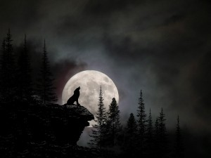 "In The Night between 23 and 24 January, The Moon Will Become a ""WOLF MOON""- Turning Point for Many People 1"