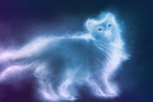 Why Having a Dog or Cat Has a Deep Spiritual Meaning 2