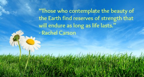 Those-Who-Contemplate-The-Beauty-Of-The-Earth-Find-Reserves-Of-Strength-That-Will-Endure-As-Long-As-Life-Lasts-Happy-Earth-Day