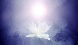 5-Virtual-Evidences-Of-Global-Spiritual-Awakening