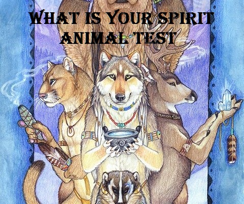 spirit animal test
