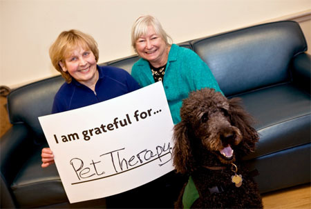 WHAT CONDITIONS/DISORDERS DOES ANIMAL-ASSISTED THERAPY TREAT?