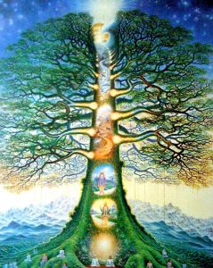 Trees Help Us Heal! This is How You Can Use Their Energy2