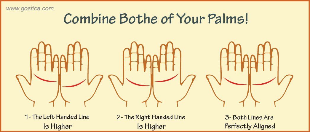 palm-lines-01-1.jpg
