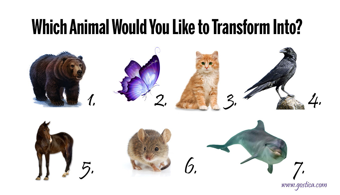Which-Animal-Would-You-Like-to-Transform-Into.jpg