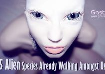 5-Alien-Species-Already-Walking-Amongst-Us.jpg