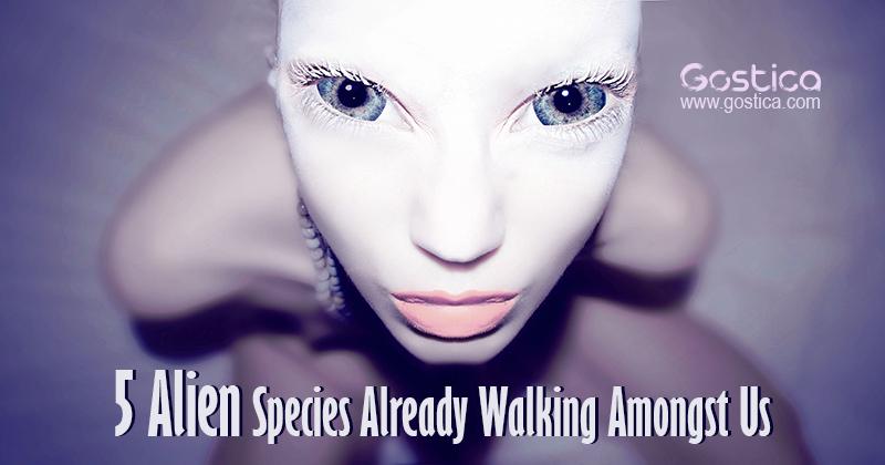 5-Alien-Species-Already-Walking-Amongst-Us.jpg