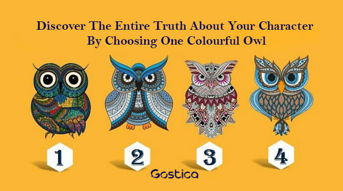 Discover-The-Entire-Truth-About-Your-Character-By-Choosing-One-Colourful-Owl1.jpg