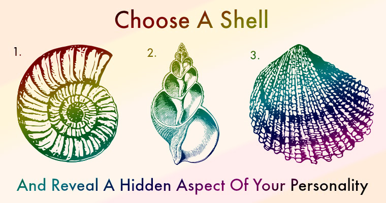Each-Shell-Represents-A-Hidden-Aspect-Of-Your-Personality.jpg
