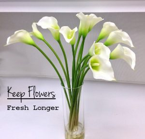 Keep-Fresh-Flowers.jpg
