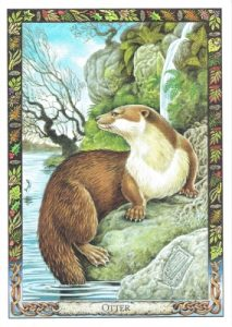 Your Winter Tarotscope Is Here: See The Druid Animal Card For Your Zodiac Sign 1