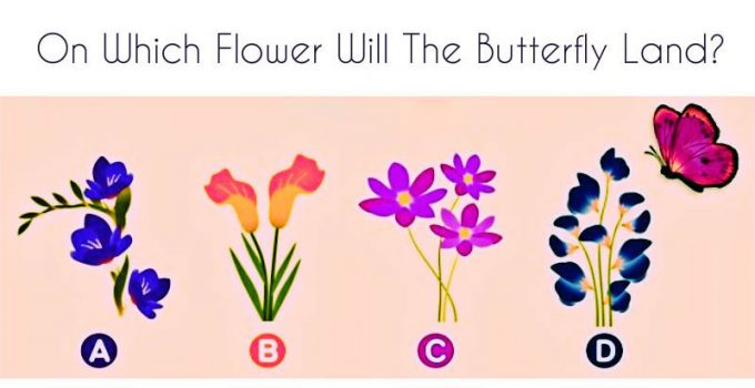 Which-Flower-Will-The-Butterfly-Land-On-The-Answer-Reveals-The-Truth-About-Your-Relationship.jpg