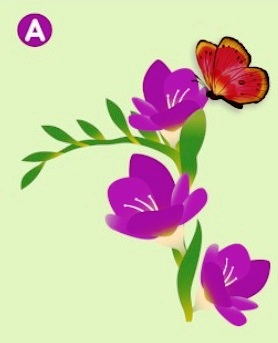 Which Flower Will The Butterfly Land On? The Answer Reveals The Truth About Your Relationship! 1