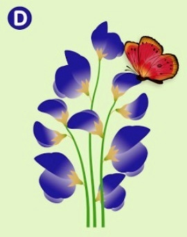 Which Flower Will The Butterfly Land On? The Answer Reveals The Truth About Your Relationship! 4