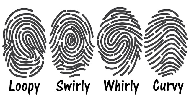 your fingerprints can tell you a lot about