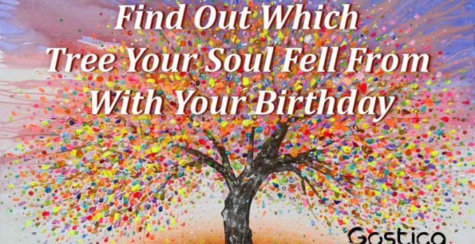 Find-Out-Which-Tree-Your-Soul-Fell-From-With-Your-Birthday.jpg