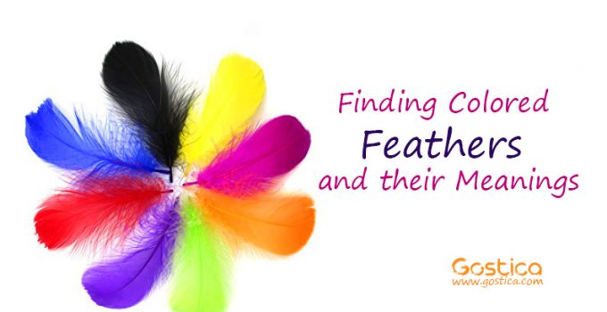 Finding-Colored-Feathers-and-their-Meanings.jpg