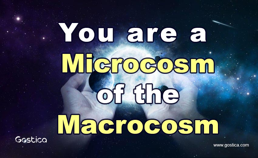 You-are-a-Microcosm-of-the-Macrocosm.jpg