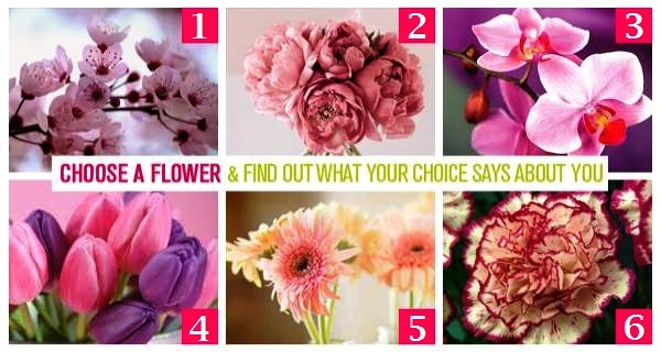 CHOOSE-A-FLOWER-AND-FIND-OUT-WHAT-YOUR-CHOICE-SAYS-ABOUT-YOU.jpg