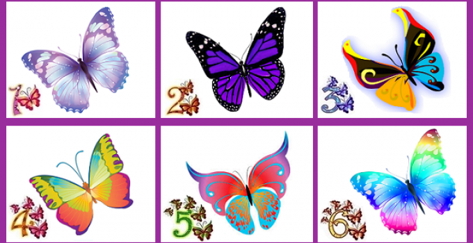 CHOOSE-YOUR-FAVORITE-BUTTERFLY-AND-DISCOVER-SOMETHING-GREAT-ABOUT-YOUR-PERSONALITY.png