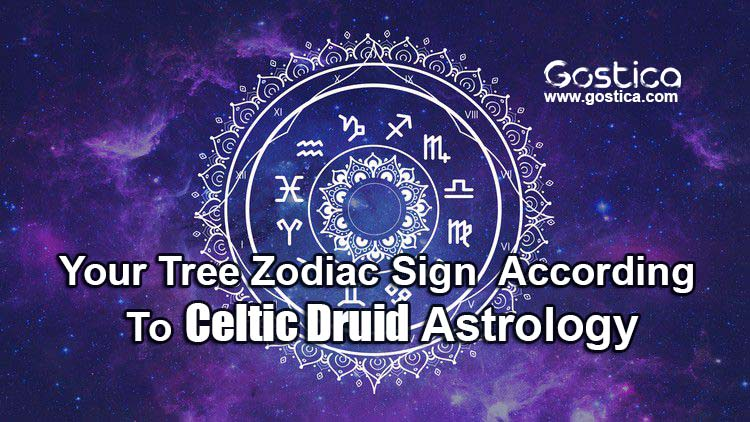 Your-Tree-Zodiac-Sign-–-According-To-Celtic-Druid-Astrology.jpg