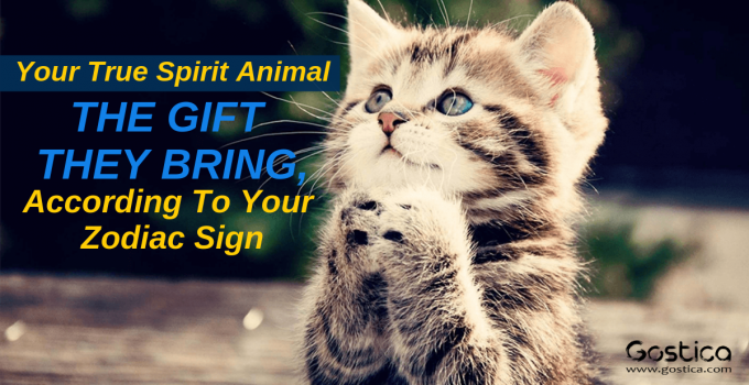 Your True Spirit Animal And The Gift They Bring, According To Your Zodiac Sign
