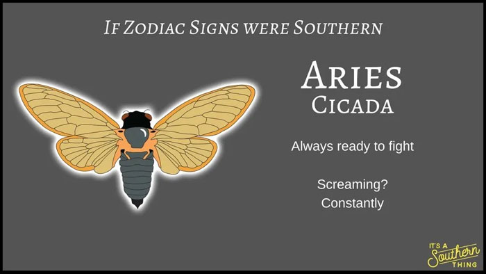 If Zodiac Signs Were Southern 1