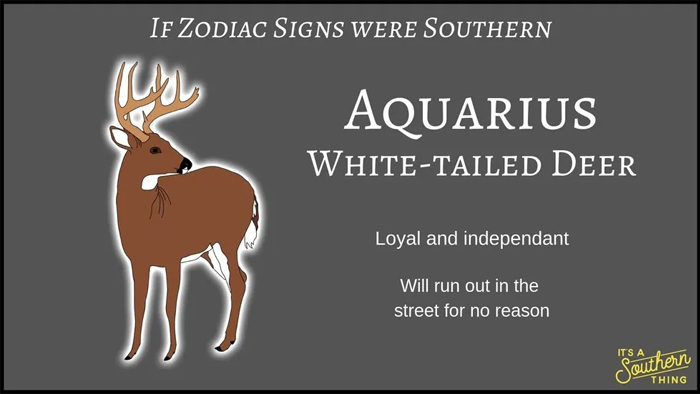 If Zodiac Signs Were Southern 11