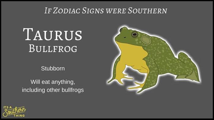 If Zodiac Signs Were Southern 2