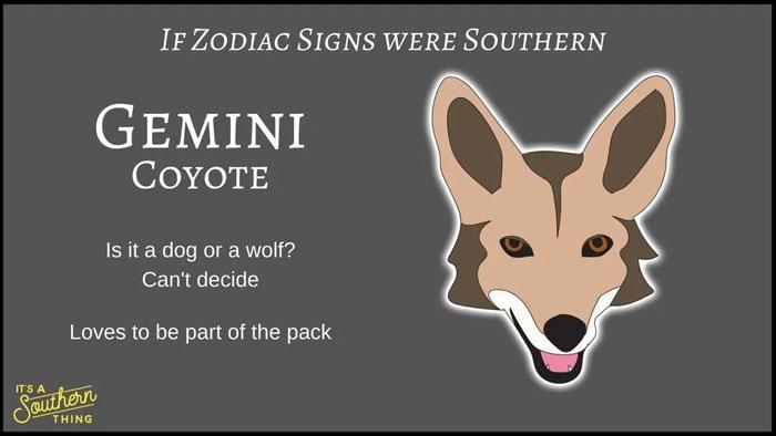 If Zodiac Signs Were Southern 3