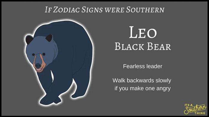 If Zodiac Signs Were Southern 5