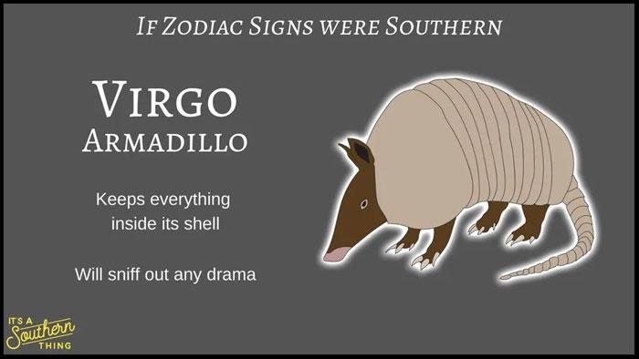 If Zodiac Signs Were Southern 6