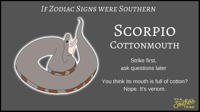 If Zodiac Signs Were Southern 8